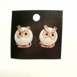 24 Z pc cost XX price 550 247x247 - Jewellery Ear Adornments - Baby Hoot