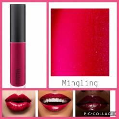 MAC Mingling Lipglass